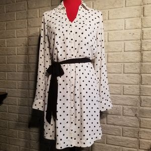 Long Sleeve Express Shirt Dress